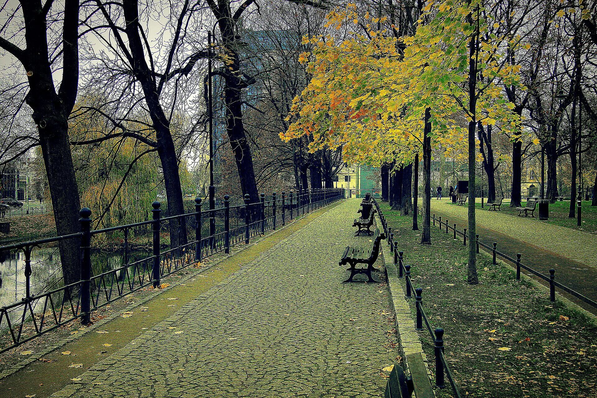 Najcudowniejsze wrocławskie parki